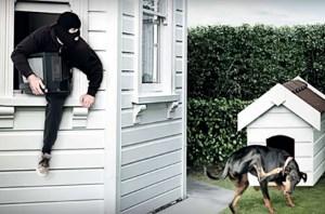 Можно ли защитить свое имущество от кражи?